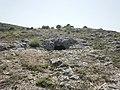 La cueva de la Mora (28 de junio 2010) - panoramio (2).jpg