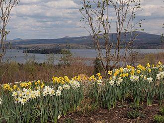 Brome Lake, Quebec - The eponymous Brome Lake.