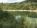 Lac de Ravilloles.JPG