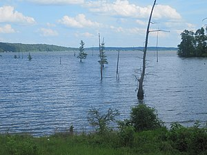 Union Parish, Louisiana - Lake D'Arbonne west of Farmerville.