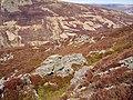 Landslip debris, Beinn na Gainimh - geograph.org.uk - 158183.jpg
