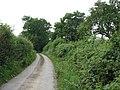 Lane South From Preston Wynne - geograph.org.uk - 1370037.jpg