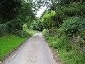Lane to Weston Church - geograph.org.uk - 879009.jpg