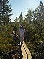 Lapland - Urho Kekkonen National Park - 20180728170821.jpg