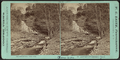 Leatherstocking's Falls, by Smith, Washington G., 1828-1893.png
