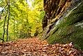 Ledges at Cuyahoga Valley National Park (10544412974).jpg