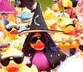 Leichlingen - rubber duck race 2007 06.jpg