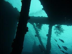 USAT Liberty - Image: Liberty wreck 3
