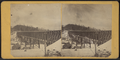 Liberty Falls Bridge, from Robert N. Dennis collection of stereoscopic views 2.png