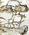 Libro apolillado, Toledo 2.jpg