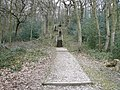 Linacre Woods - Shortcut to Top Car Park - geograph.org.uk - 728052.jpg