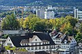 Lindenhof - Polyterasse 2012-09-27 14-05-56.jpg