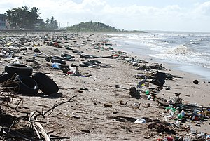 Pollution - The litter problem on the coast of Guyana, 2010