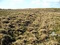 Llwybr i Ffridd-y-foel. Path. - geograph.org.uk - 407445.jpg
