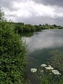 Lodge Lane Pond - geograph.org.uk - 476625.jpg