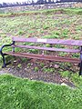 Long shot of the bench (OpenBenches 3577-1).jpg