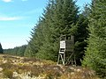 Lookout Tower - geograph.org.uk - 779077.jpg