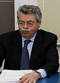 Luigi Meduri.jpg