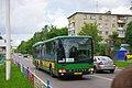Lukhovitsy, Moscow Oblast, Russia - panoramio (115).jpg