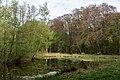 Münster, Wolbeck, Wolbecker Tiergarten, Naturwaldzelle -Teppes Viertel- -- 2014 -- 7078.jpg