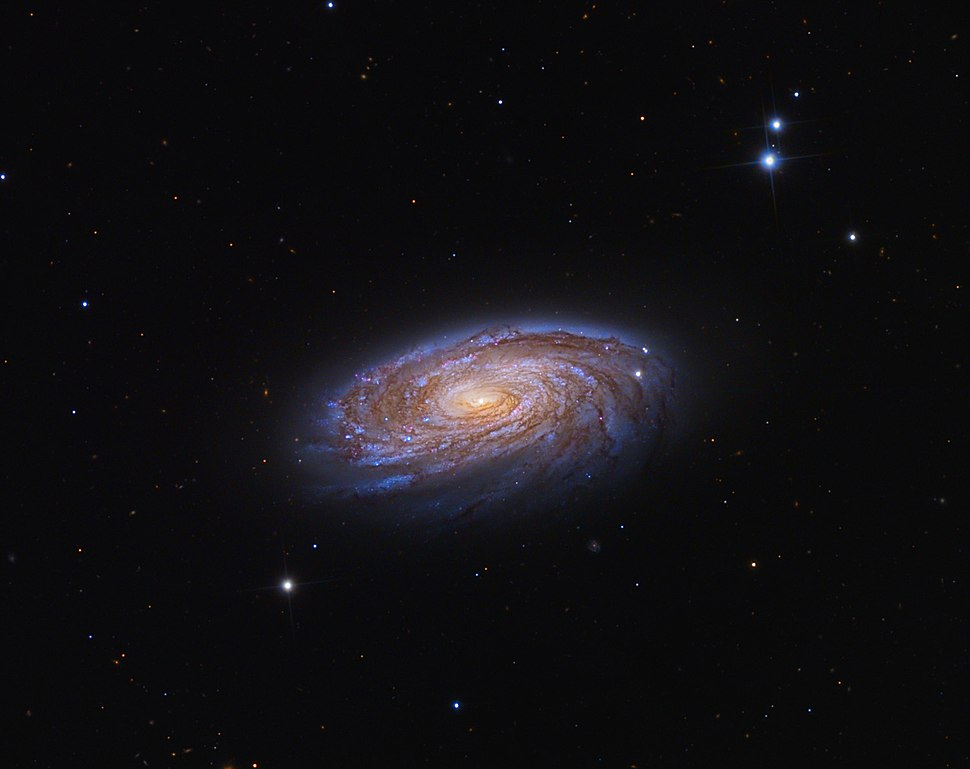 M88s.jpg