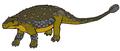 MPC Pinacosaurus restoration.png