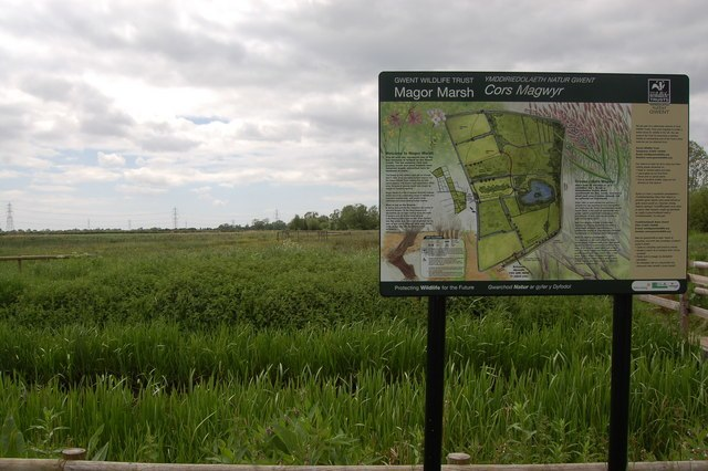 Magor Marsh Nature Reserve (Gwent Wildlife Trust) by Roger Davies