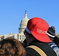 Make American Native Again hat at at Beyond NoDAPL March on Washington, DC.jpg