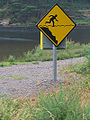Man over water Road sign Glendalough Ireland.jpg