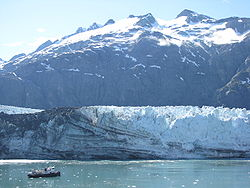 Margerie Glacier July 2008.JPG