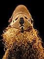 Masque féminin Pende du Congo (musée de Dahlem, Berlin) (3061472161).jpg