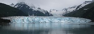 Meares Glacier - Panoramic view of the glacier