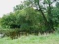 Medieval Fish Pond - geograph.org.uk - 553281.jpg