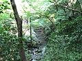 Mino-park2.jpg