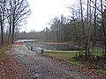 Mirostowice Dolne. Zbiornik retencyjny (^) w lesie. - panoramio.jpg
