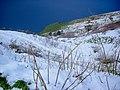 Monte Sant'Elia innevato.jpg