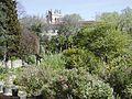 Montpellier jardin plantes1.jpg