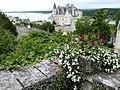Montsoreau (château).jpg