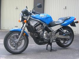 Suzuki Bandit Bhp