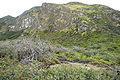 Mount Merapi Ijen A.JPG