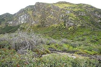 Ijen - Image: Mount Merapi Ijen A
