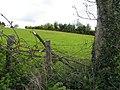 Mullaghduff Townland - geograph.org.uk - 1854893.jpg