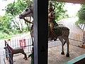 Mundagapadi, Tamil Nadu 636601, India - panoramio (4).jpg