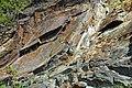 Muscovite schist (Precambrian; Blue Ridge, North Carolina, USA) 5.jpg