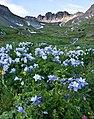 My Public Lands Roadtrip- Wilderness along the Alpine Loop in Colorado (19785510201).jpg