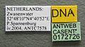 Myrmica specioides casent0172726 label 1.jpg