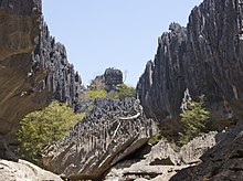 Karst topography at Tsingy de Namoroka National Park in northwestern Madagascar