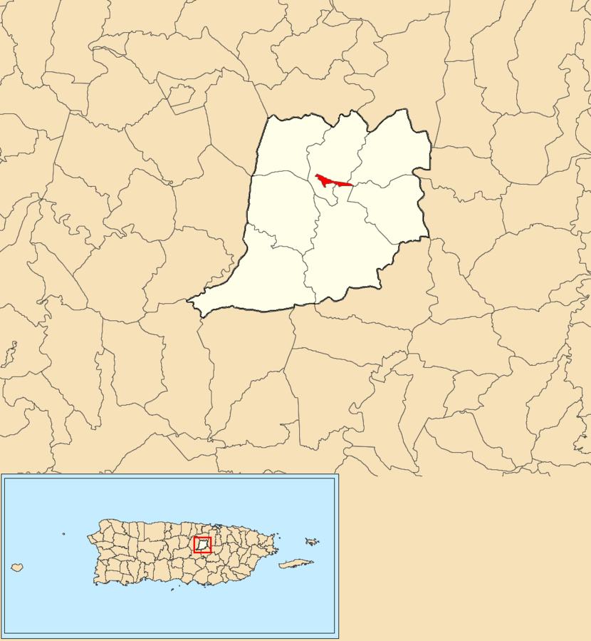 Naranjito barrio-pueblo