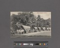 Native transport, Ceylon (NYPL Hades-2359915-4044680).tiff