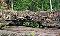 Natural arch in basalt (Gooseberry River Basalts, North Shore Volcanic Series, Mesoproterozoic, 1097-1098 Ma; Gooseberry Falls State Park, Minnesota, USA) 1 (22322995728).jpg